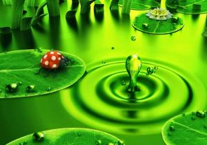 Loạt hình ảnh động thiên nhiên đẹp nhất hành tinh xanh