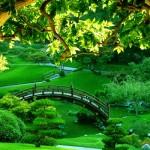 Top 45+ Hình Nền Máy Tính Thiên Nhiên Đầy Lãng Mạn & So Deep Nhất