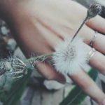 50+ Câu Nói Hay Về Tình Yêu & Kèm Hình Ảnh Đẹp Có Chữ Ý Nghĩa