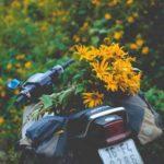 STT Phượt Bụi – 45+ Câu Nói Hay Về Phượt Bụi Và Những Cung Đường
