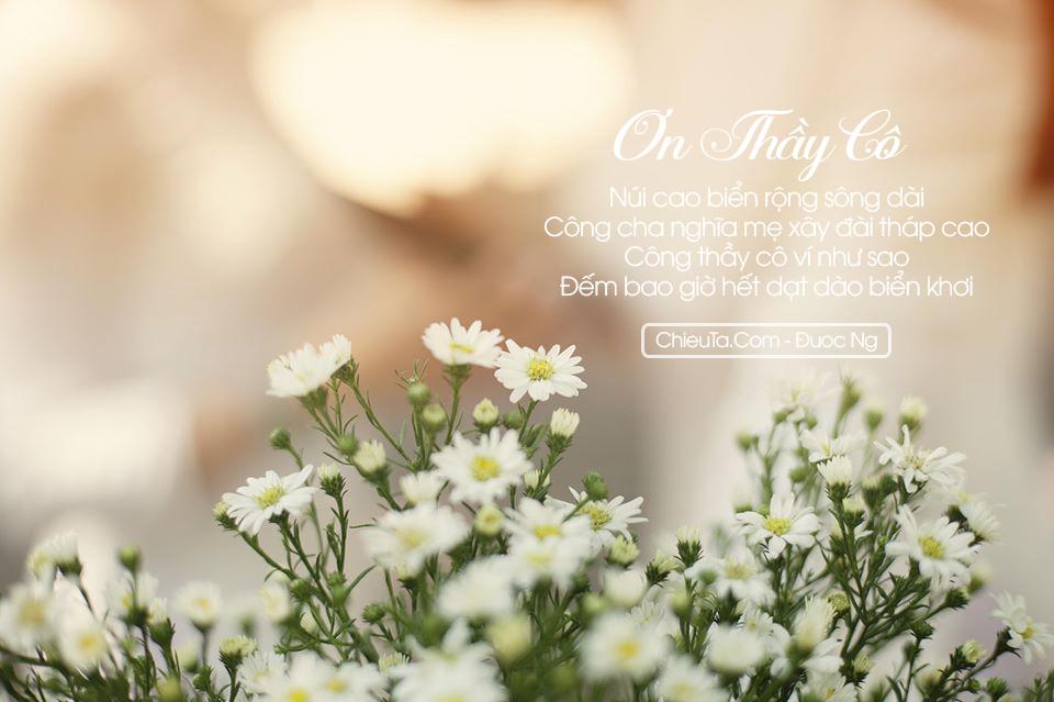 Thơ Về Ngày 20/11 & Các Bài Thơ Ngày 20/11 Xúc Động, Ý Nghĩa