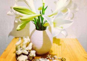 40+ Bài Thơ, Những Câu Thơ Hay Về Hoa Loa Kèn Tháng 4 Trời Xanh