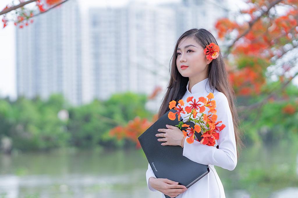 Thơ Tình Hoa Phượng - 18+ Chùm Thơ Hay Về Hoa Phượng Vĩ Ngày Hạ