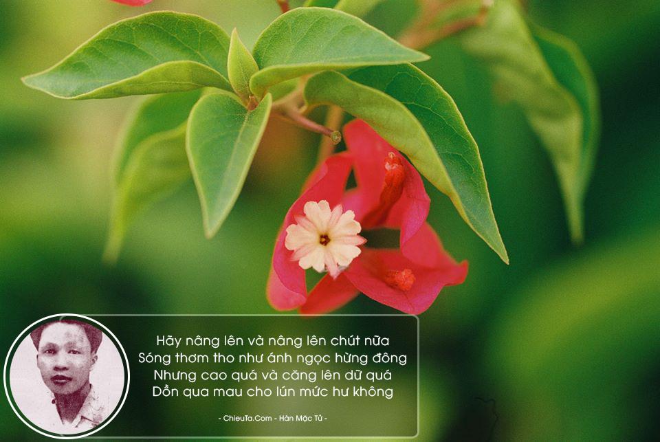 Tập 13 Bài Thơ Về Trăng Hay & Bất Hủ, Nổi Tiếng Của Hàn Mặc Tử